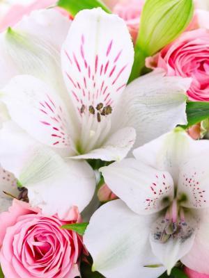 花移动壁纸的花束