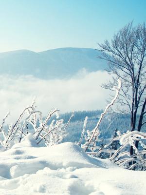 雪冬天山手机壁纸