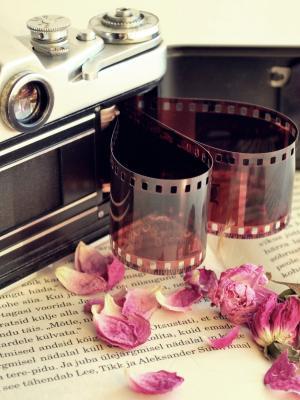 相机电影手机壁纸