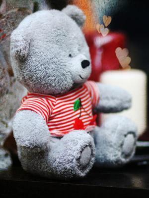 泰迪熊手机壁纸