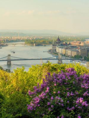 布达佩斯城堡手机壁纸