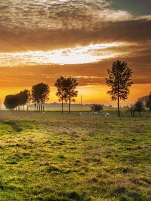 风景大自然夕阳云移动壁纸