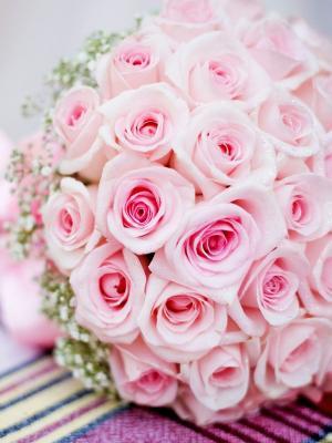 婚礼玫瑰手机壁纸