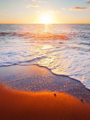黄金沙滩手机壁纸