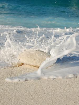 海滩海移动壁纸