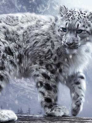白色豹子手机壁纸