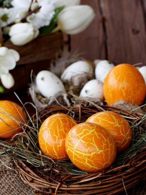 橙色蛋移动壁纸