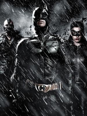 蝙蝠侠猫女手机壁纸