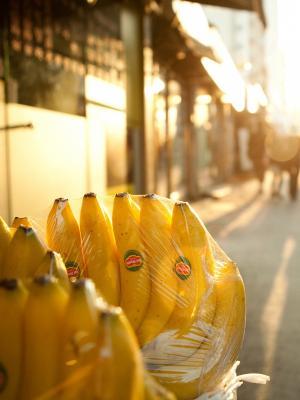 香蕉手机壁纸