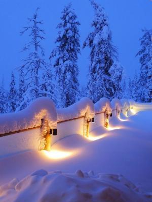 冬天雪手机壁纸