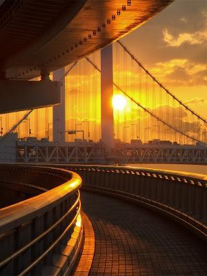 东京桥梁手机壁纸