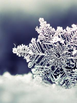 自然雪花移动壁纸