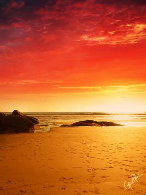 火海滩手机壁纸