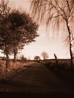 道路天际线景观手机壁纸