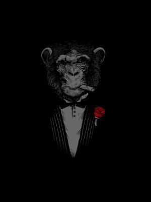 黑猩猩雪茄玫瑰移动壁纸