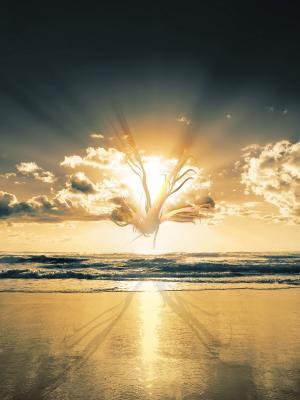 云景观海滩移动壁纸