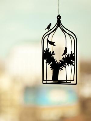 鸟笼照片手机壁纸