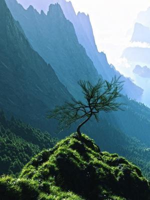 风景大自然山谷手机壁纸