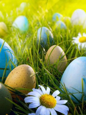 复活节彩蛋狩猎手机壁纸