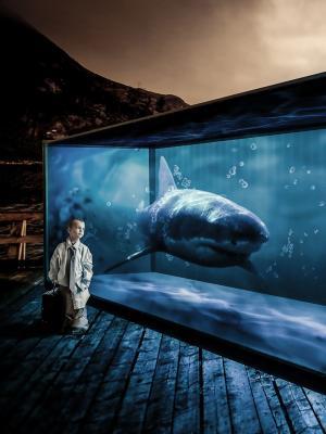 超现实的鲨鱼男孩手机壁纸
