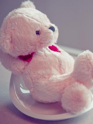 毛茸茸的泰迪熊手机壁纸