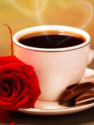 cvety rozy lyubov kofe红色移动壁纸