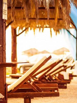 沙太阳棕榈树沙滩手机壁纸