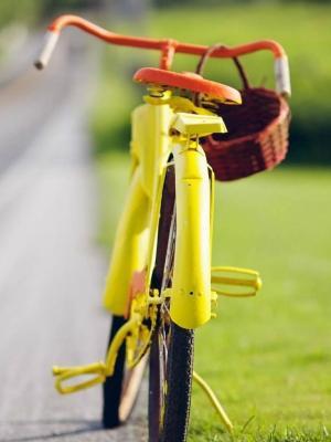 黄色自行车手机壁纸
