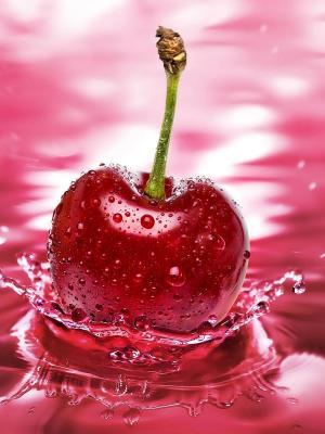 樱桃艺术手机壁纸