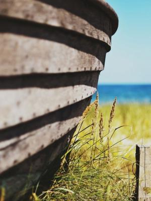 宏栅栏海滩大自然移动壁纸