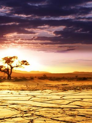 非洲湖手机壁纸