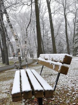 公园长椅在移动壁纸