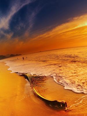 海滩景观海移动壁纸