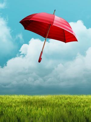 伞领域手机壁纸