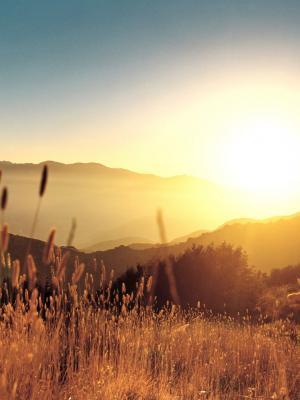 日出风景移动壁纸