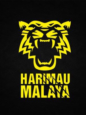 马来西亚国家足球队手机壁纸
