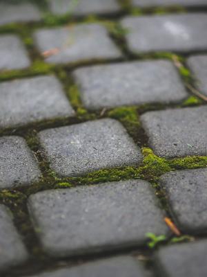 花园青苔石Sett移动墙纸