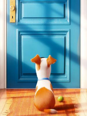 宠物电影手机壁纸的秘密生活