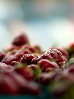 水果草莓手机壁纸