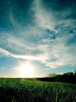 绿色日落移动壁纸