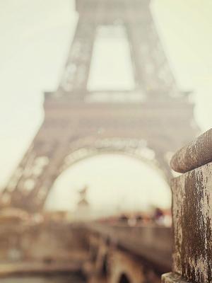 散景埃菲尔铁塔移动壁纸