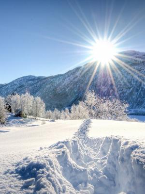 在雪机动性墙纸的道路