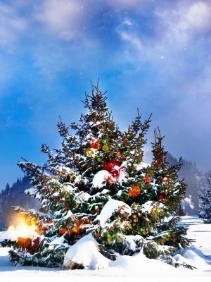 圣诞树装饰外面的移动壁纸