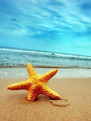 海洋沙滩手机壁纸