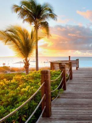 日落海自然移动壁纸