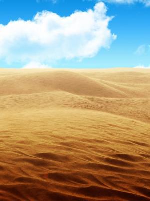 桑迪沙漠手机壁纸