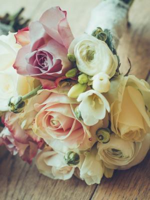花卉玫瑰手机壁纸