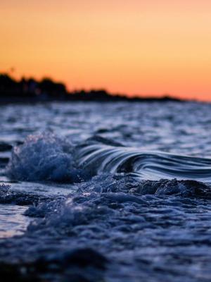 宏观自然海滩水移动壁纸