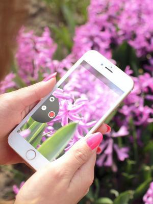 手机镜头是美丽的移动壁纸