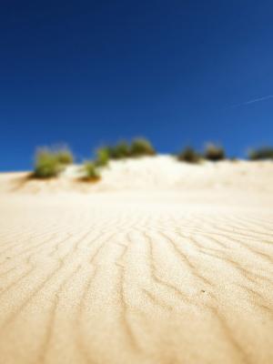 在沙移动壁纸的东西